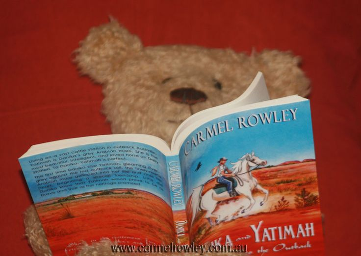 Byron bear reading 'Danika and Yatimah from Egypt to the Outback' book one in the 'As the Crow Flies' series.