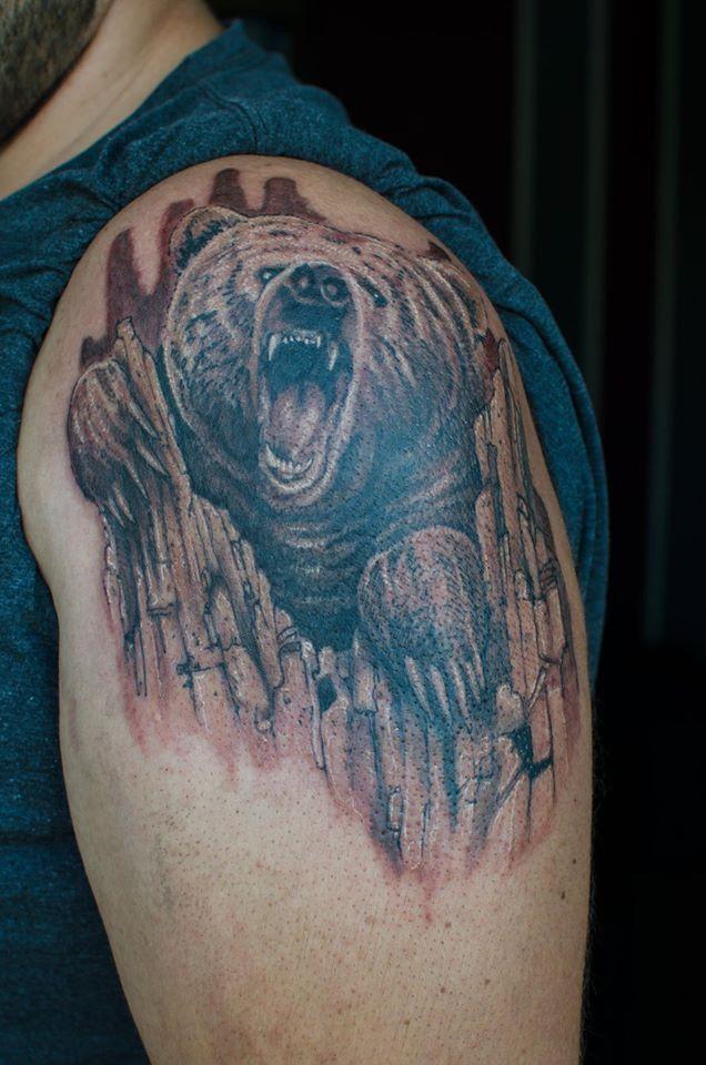 Bear by ficek-art.deviantart.com on @DeviantArt