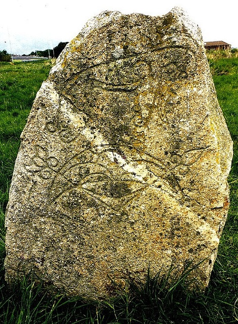 Broomend of Crichie, Aberdeenshire~  A stone within a henge monument, with other standing stones. This one was used by the ancient Picts as an emblem stone, carved with a crescent and V-sign, and strange creatures.    (Copyright All rights reserved by tina negus)