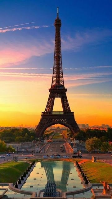 Stunning view of Eiffel Tower, Paris. I worked to send the family, I stayed behind and cared for our critters.