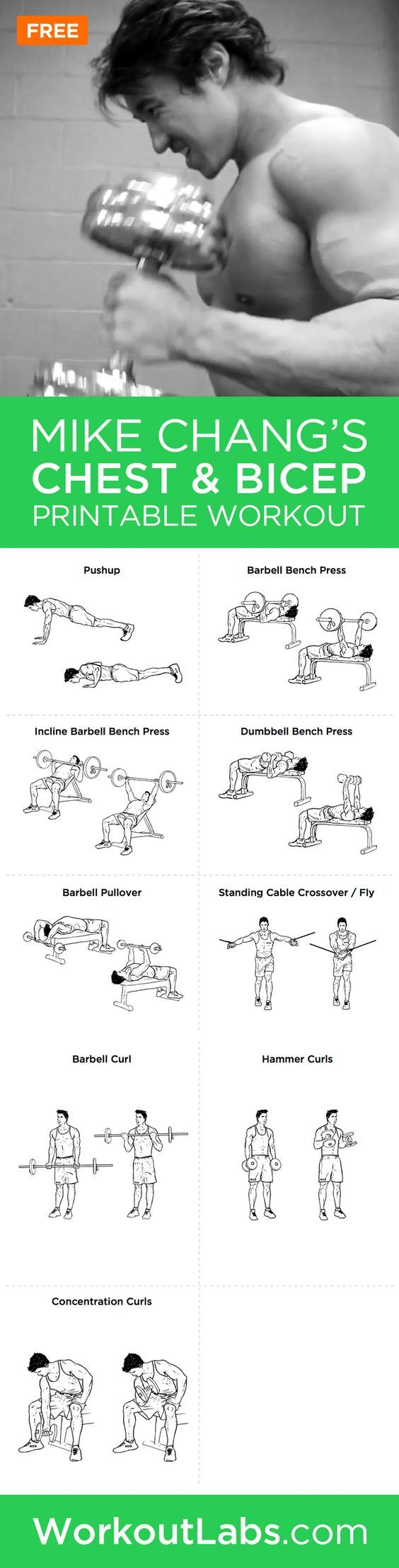 Mike Chang's Actual Chest And Bicep Workout – Mike Chang's actual chest and bicep workout featuring the exercises you will need to build the ripped chest and biceps that you've always wanted.: