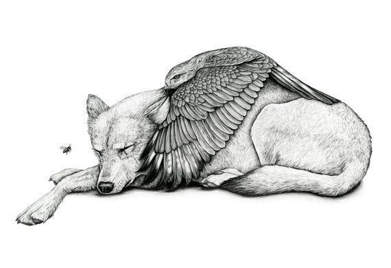 Save You From Yourself  Limited edition Print of wolf sheltering under the wings of hawk.  Edition 50  Size: 330 x 482mm Archival ink print on