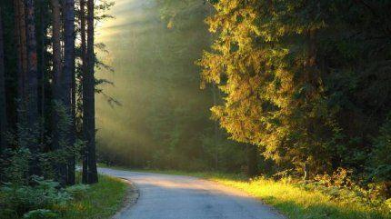 Будущее тревожит нас, а прошлое нас держит. Вот почему настоящее ускользает от нас.