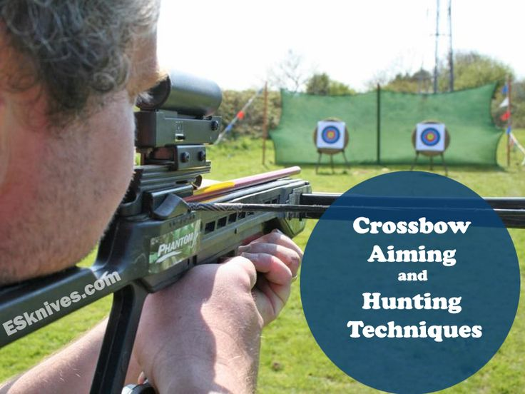 Crossbow Aiming and Hunting Techniques - Extremely Sharp Swords & Knives