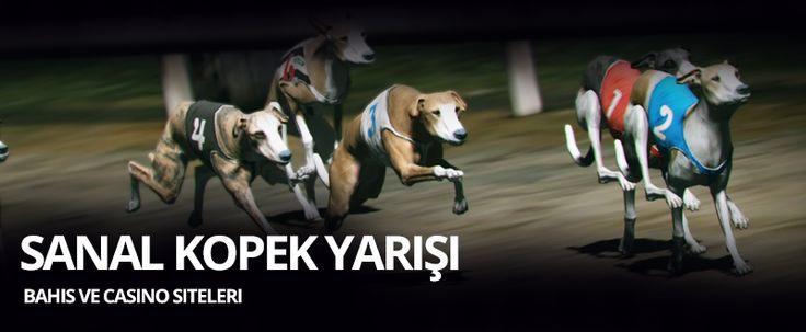 Sanal Köpek Yarışı Oynanan Bahis Siteleri    Sanal köpek yarışı son yılların en çok oynanan bahis oyunlarından biri haline gelmiştir. Neredeyse her bahis sitesinde artık sanal köpek yarışı oyunlarını görmeniz mümkündür. Oynaması da oldukça kolay olan köpek yarışı bahis severlerin ilgisini bir hayli çekmiştir. Küçük bahis seçeneği ile de sürekli tercih edilmektedir. Sizlerde güvenilir bahis siteleri üzerinden köpek yarışı oyunlarını oynayabilir ve kazanabilirsiniz.    YAZININ DEVAMI