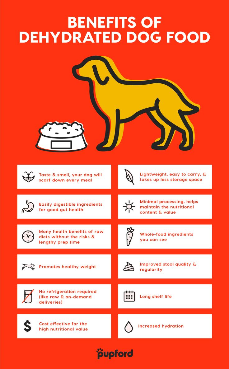 Dehydrated dog food for all stages of life dehydrated
