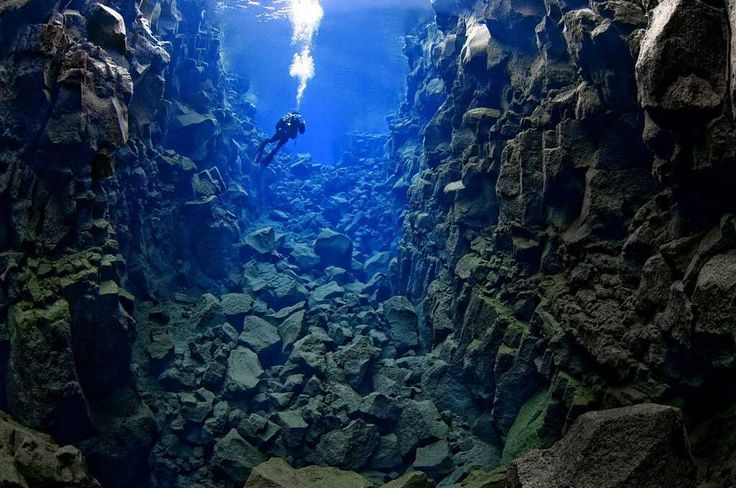 An underwater location where you can touch North America and Europe at the same time. This is the clearest and top dive and snorkel sites in the world. Silfra fissure located in Iceland is actually a crack between the North American and Eurasian continents meaning that you dive or snorkel right where the continental plates meet and drift apart about 2cm per year.  #iceland #silfra #fissure #scuba #snorkel #dive #underwater #water #ocean #instagood #instalike #beautiful #landmark…