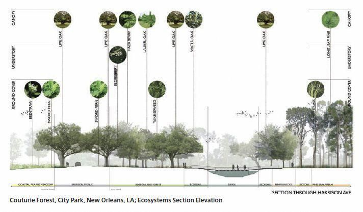 Growing Fun Ction Delaware River Park Islands Of Resilience Landscape Architecture Section Landscape Architecture Architectural Section