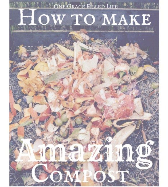 Want your organic garden to go from drab to fab.? Start composting, baby!