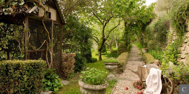sideryardgardens jardin de provence. Black Bedroom Furniture Sets. Home Design Ideas