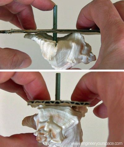 diy decorative shell dresser knobs, crafts, painted furniture, Place the cardboard with the bolt inside the shell and let dry