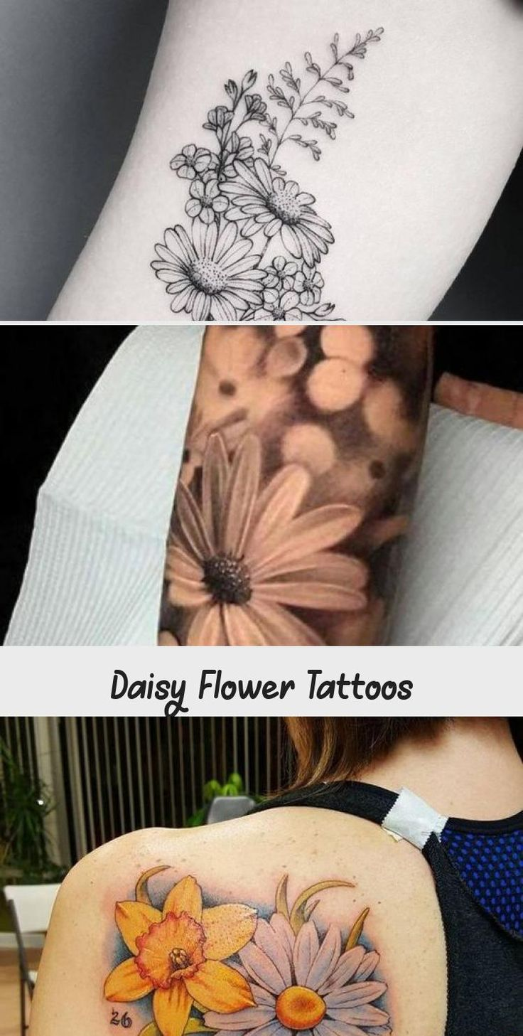 Daisy Flower Tattoo Meaning and Designs Daisy Flower