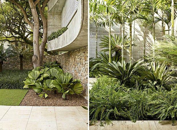 plantas para jardim altas: para cada tipo de planta foto casa e jardim 25 1 luisi bilbao varanda