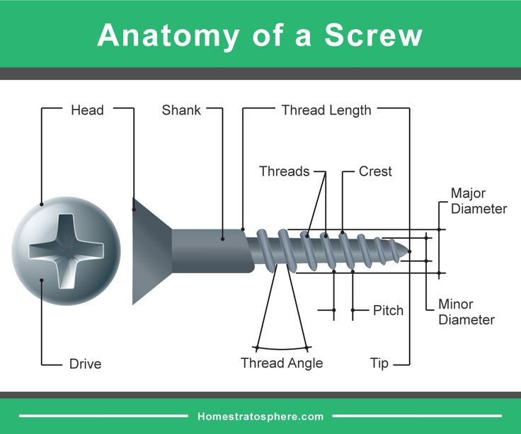 Parts Of A Screw  Detailed Diagram