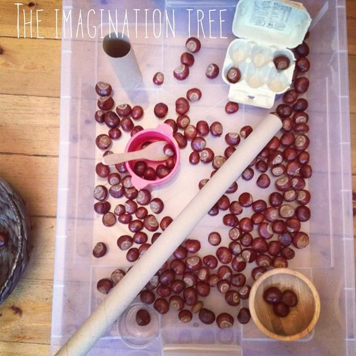 "Invitation to play with conkers, chestnuts, bowls, scoops, saucepans, spoons & cardboard tubes from The Imagination Tree ("",)"