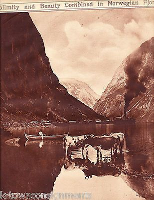 GUDOVARGENS AT THE BASE OF NAEROFJORD NORWAY NEWS PHOTO POSTER PRINT 1921