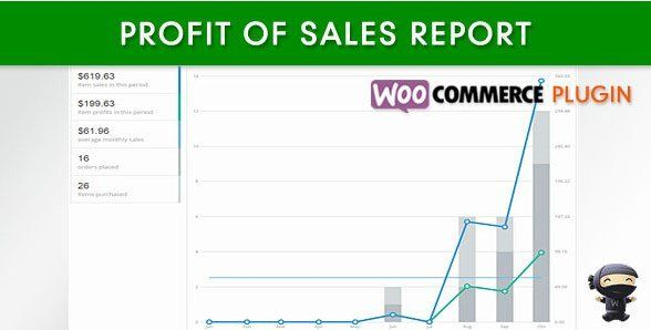 Download Woocommerce Profit Of Sales Report At Just 4 99