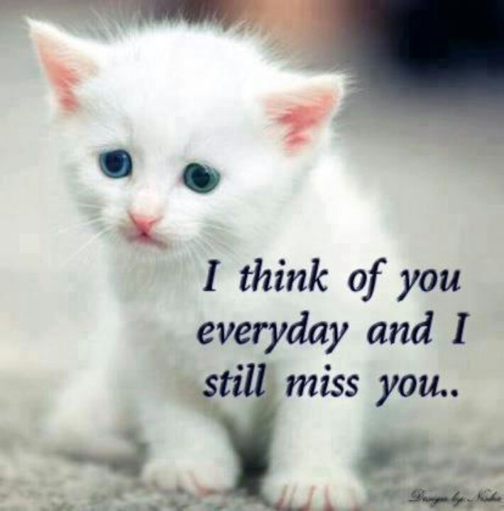 70f3c539abb7ec3f44bd9f90ce802205 i love you mom miss you mom 66 best mom images on pinterest words, thoughts and dads,Miss You Mom Meme
