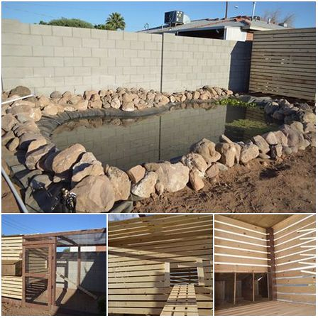 This Large Pond And Amazing Chicken Coop Was Designed Built By Garden Pool Volunteers