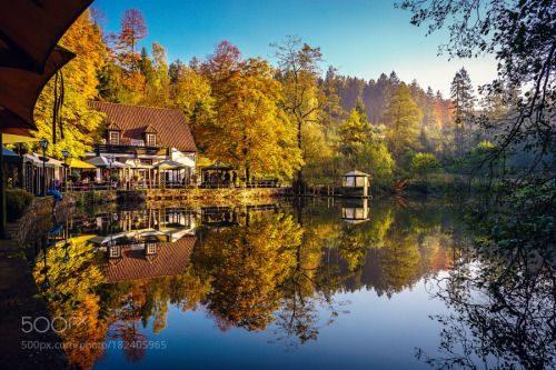 Natural mirror by LeonGt1987  Colors Water Autumn Deutschland Germany Mirror Colorful Silberbachtal Sony a7ii Herbest Sigman MC 11
