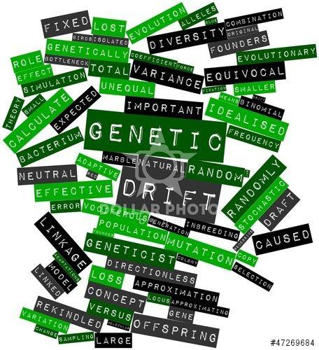 the 25 best genetic drift ideas on pinterest natural selection artist 39 s book and evolution. Black Bedroom Furniture Sets. Home Design Ideas