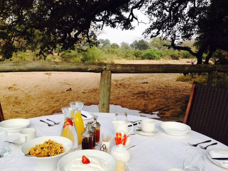 Breakfast at Tintswalo Safari Lodge - fresh on the deck, with a hushed view of the surrounding bush. <3