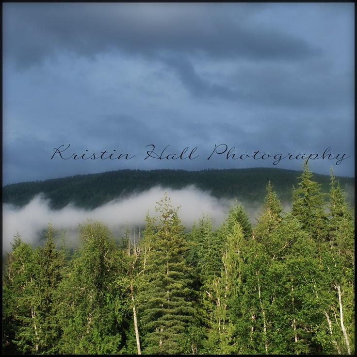 Photography by Kristin Hall Copyright 2012 www.facebook.com/acraftywife