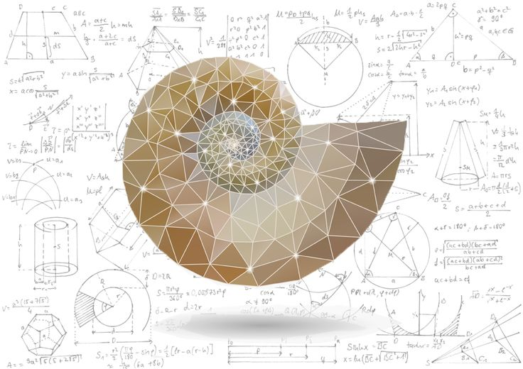 Mathematical Masterpieces: Making Art From Equations | DiscoverMagazine.com