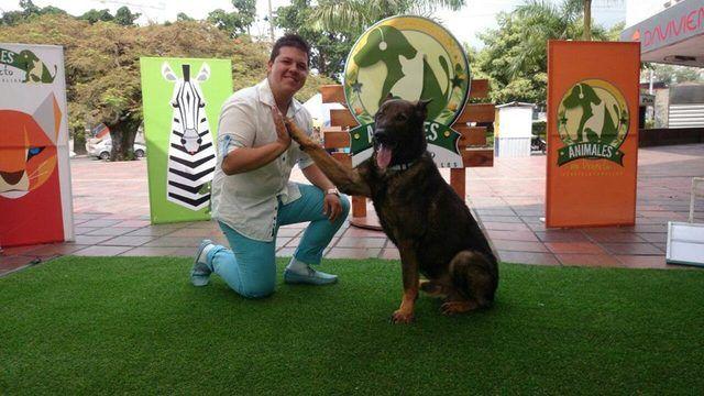 Huellas Adiestramiento Canino - Animales en General - Todo Colombia