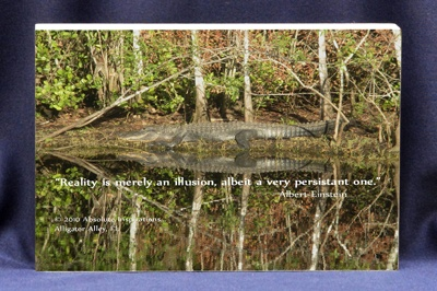 "Custom Photo Block by Absolute Inspirations. Spectacular illusion!  Photograph taken at Alligator Alley, Florida. Accompanied by an Albert Einstein quote on Reality/Illusion. ""Reality is merely an illusion, albeit a very persistant one."""
