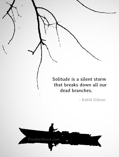 Solitude is  a Silent Storm that breaks down all our dead branches. – Kahlil Gibran