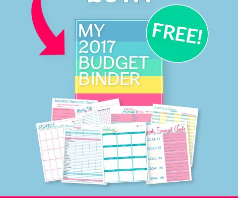 Re-asses your finances and make any necessary changes to your budget with my 2017 Budget Binder worksheets.