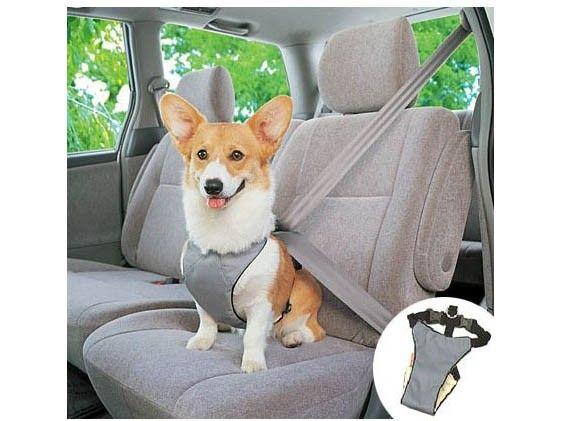 Keep Your Dog Safe - Adjustable Doggy Safety Seat Belt Car Harness