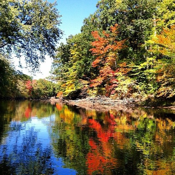 A gorgeous fall day on the Grand River. Photo by Instagram user @shawste4.User Shawste4, Instagram User, Puree Michigan, Lakes States, Gorgeous Places, Mittens States, Michigan Grand, Grand Rivers Hom, Gorgeous Fall