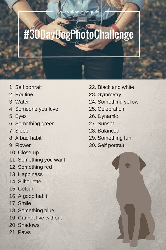 30 DAY DOG PHOTO CHALLENGE