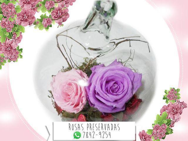 Centro de mesa de Rosa Preservada Rosado y Morado Lila en Manzana de Cristal ¡Mira más estilos! #decoración #decoration #roses #rosas #beauty