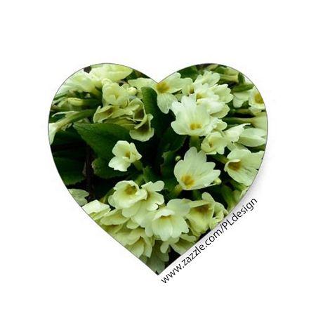 Beautiful Spring Primula vulgaris Primroses in dry leaves Sticker by #PLdesign #flowers #FlowerGift #Spring