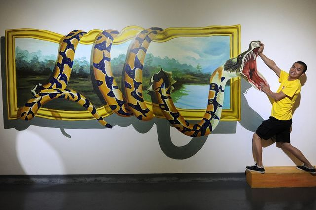 3d wall painting art illusion snakes on wall visitor poses for photo with 3d painting during show eight artists spent about 50u2026 interesting odd awe inspiring in 2018u2026
