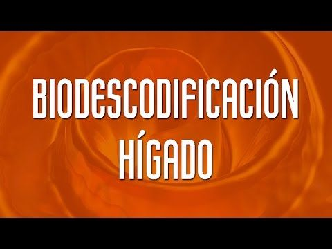 (241) HIGADO - BIODESCODIFICACIÓN - YouTube