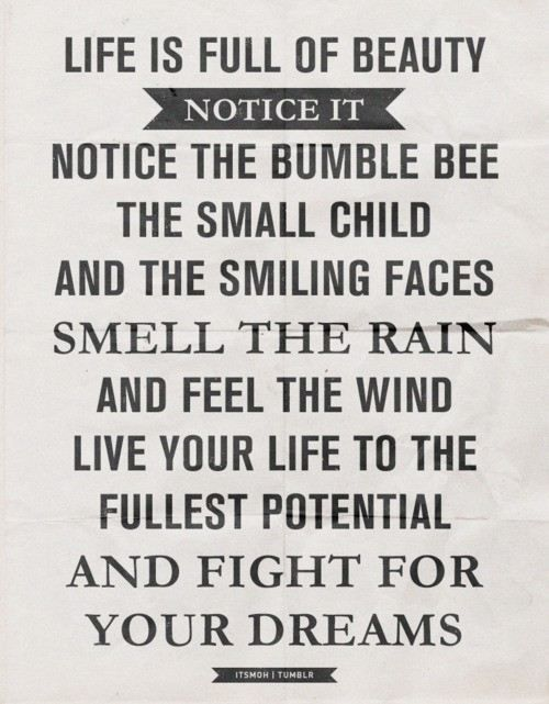 Beauty: Little Things, Life, Inspiration, Quotes, Wisdom, Beauty, Bumble Bees, Notice