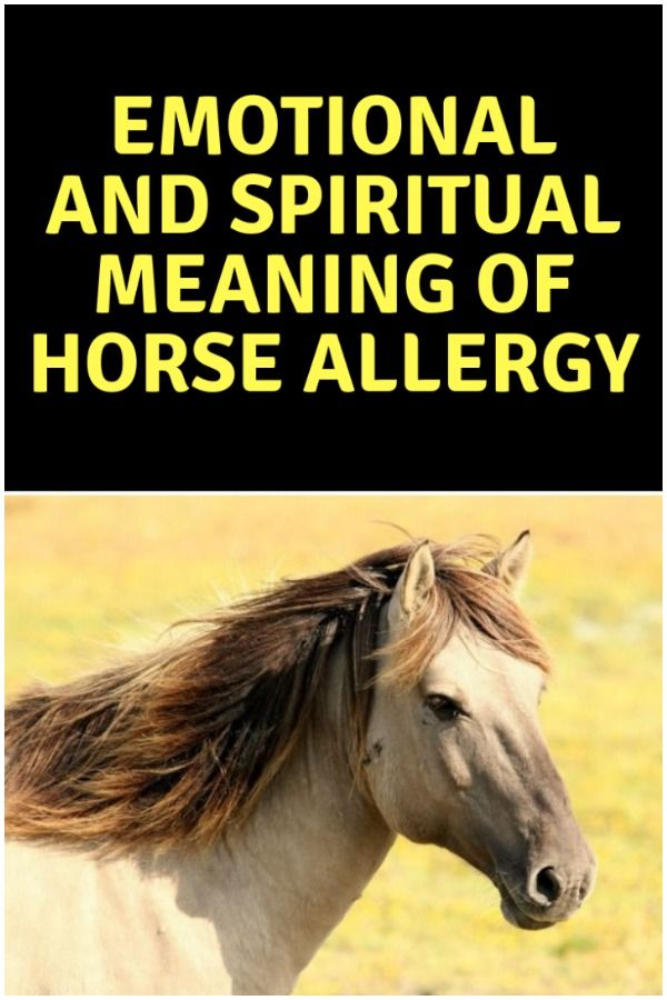 Allergies - Spiritual Meaning, Causes, Symptoms, Prevention