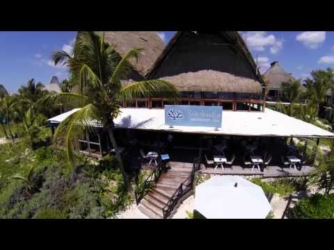 ▶ Hotel Los Lirios Tulum - YouTube