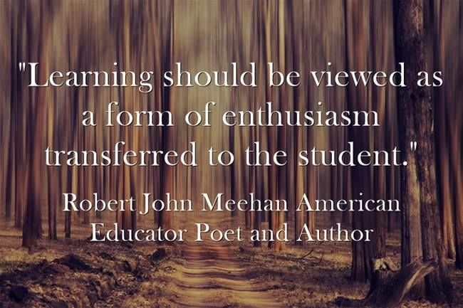 """""""Learning should be viewed as a form of enthusiasm transferred to the student."""" Robert John Meehan"""
