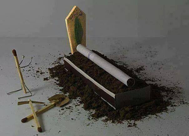 Güzel bir Mezar tasarlıyorum senin için... Hayatın boyunca Ot'tun, bari saksın güzel olsun..