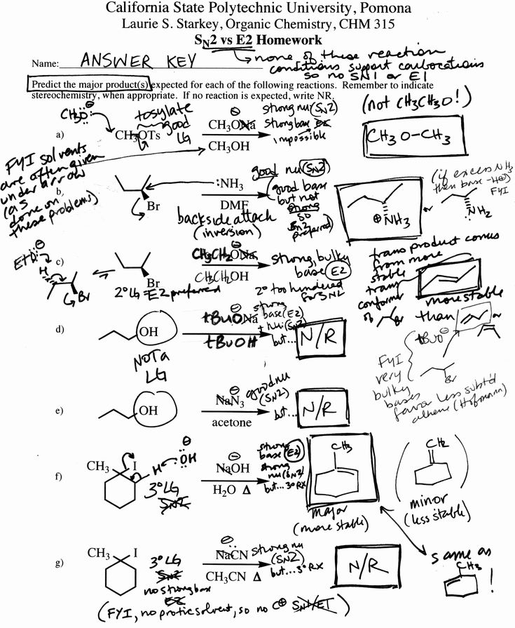Organic Chemistry Worksheet with Answers Awesome 15 Best
