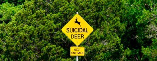 Suicidal...
