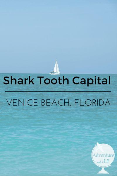 Shark Tooth Capital  - Venice Beach, Florida.  Home of miles and miles of shark teeth on the sand.