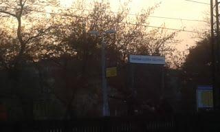 Grochów i okolice: Rekonstrukcja bitwy pod Olszynką Grochowską