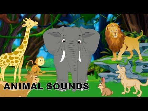 Sounds of Animals | 5 min