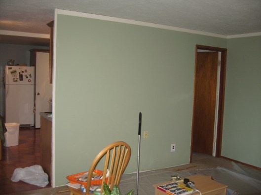 A Year Of Homeowner Ness The Changes Kitchen Paint